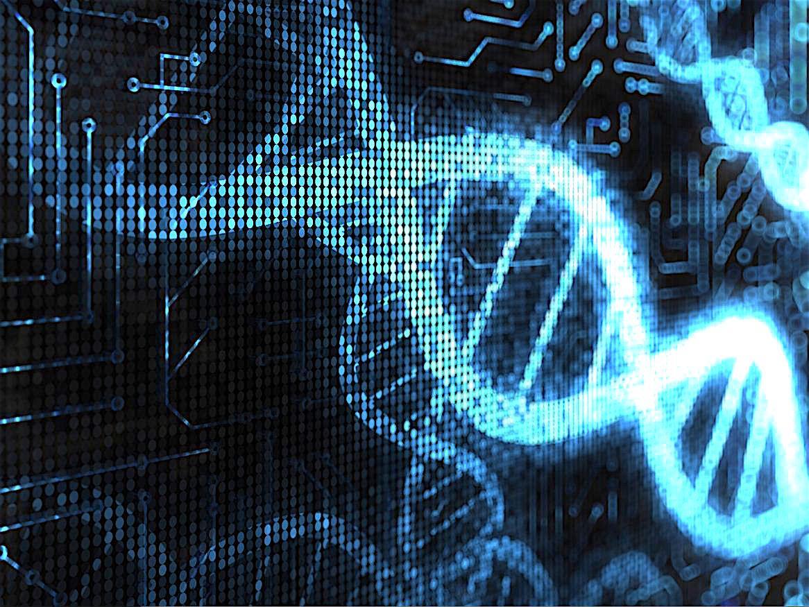 DNA New